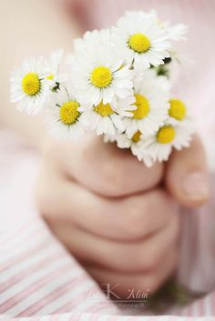 A handful of daisies given by a child warms the heart...even if they're picked from your own garden.