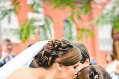21 Impossibly Adorable Wedding Day Dogs Good.