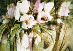 Neu in meiner Galerie bei OhMyPrints: Weiße Tulpen in Vase - abstrakt
