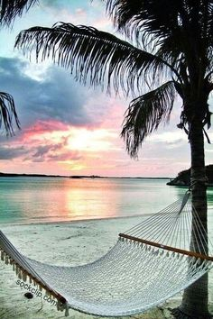 Me & you babe will be sitting in that hammock soon!