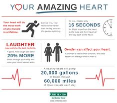 Your heart is amazing! It will work the hardest out of all of your muscles in your lifetime.