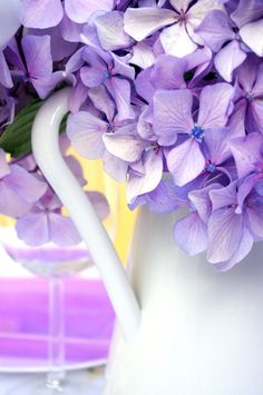 "Hydrogen Flower/ purple - I like the flowers, but they're ""hydrangea"" and not ""hydrogen"" :)"