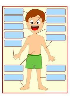 Resultado de imagen de the parts of the body evaluation sheet French Teaching Resources, Teaching French, Teaching Spanish, Learning Italian, Learning Arabic, Kids Learning, French Classroom, Spanish Classroom, Human Body Crafts