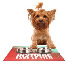 Kess InHouse Danny Ivan 'Toi Histoire' Feeding Mat for Pet Bowl, 18 by 13-Inch *** Click image to review more details. (This is an affiliate link and I receive a commission for the sales) #MyPet