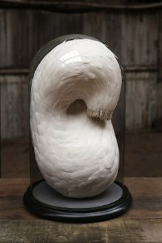 Feather Sculpture by Kate McGuire