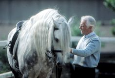 """An article by Kip Mistral titled """"Michel Henriquet: The Vanishing Point of Lightness"""", first published in Equine Journal. The First Academy, Mythological Characters, Water Drawing, Vanishing Point, My Ride, Dressage, Water Features, Dog Cat, Horses"""