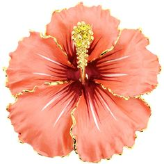 Goldtone Hawaiian Hibiscus Crystal Flower Brooch ($22) ❤ liked on Polyvore featuring jewelry, brooches, accessories, flowers, backgrounds, brooch, orange, flower jewelry, flower pin brooch and flower broach