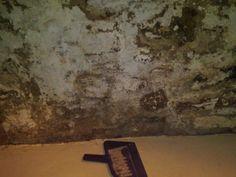 Crumbling old basement walls Concrete Basement Walls, Dry Basement, Basement Laundry, Basement House, Basement Storage, Basement Stairs, Basement Flooring, Basement Ideas, Basement Waterproofing