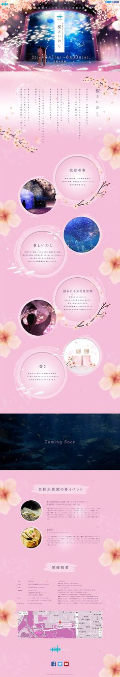 ランディングページ LP 春を楽しむインタラクティブアート 桜といわし|サービス|自社サイト