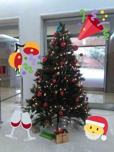 Christmas Tree, Holiday Decor, Home Decor, Filing Cabinets, Computer File, Xmas, Teal Christmas Tree, Decoration Home, Room Decor