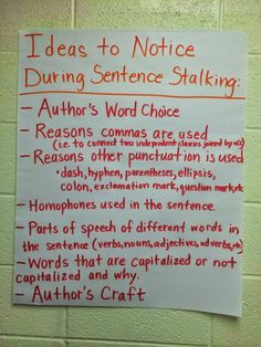 Mentor Sentences Anchor Chart to give students ideas on places to notice within the sentences. #sentencestalking #grammarincontext