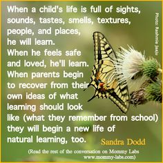 """Need to learn more about """"unschooling"""".  an interview with Sandra Dodd about natural learning"""