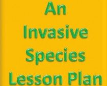 Lesson Plan - Snowball effect of Invasive Species at Devil's Lake (Grades 3 to 8)