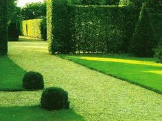 Green lawns provide fantastic emerald green color for yard landscaping and allow to accentuate outdoor living spaces with manicured lawns, making them centerpieces. Green lawns are an integral part of yard landscaping and wonderful decorations for gardens or outdoor seating areas near the house.