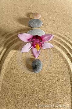 Zen Photo:  This Photo was uploaded by rainbowella42. Find other Zen pictures and photos or upload your own with Photobucket free image and video hosting...
