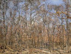Der Buchenwald, 1885, by Ferdinand Hodler (1853-1918), Kunstmuseum Solothurn