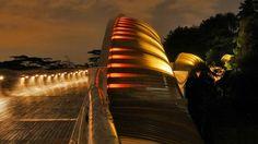 Beautiful bridges around the globe! - Deviant World Henderson Waves, Pedestrian Bridge, Free Things To Do, Take A Break, Thing 1 Thing 2, Singapore, Travel Inspiration, Stuff To Do