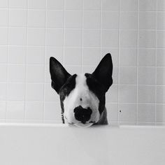 I <3 Baths  #whiteandblack