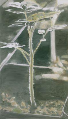 Luc TuymansPlant 2003 167,5 x 95,5 cm oil on canvas