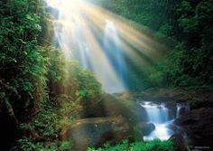 Waterfall, Magic Forests (1000 parça puzzle) Heye puzzle 38,50 TL 37,35 TL (%3.00 havale indirimi)