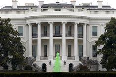 March 17, St. Patrick day, Washington DC, USA