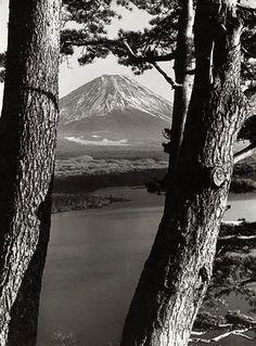 運気アップに効果のある富士山画像 Fuji, Mount Rainier, Mountains, Nature, Travel, Naturaleza, Viajes, Destinations, Traveling