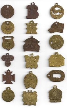 dog license tag collection