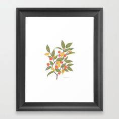 Botanical Illustration, Framed Art Prints, Berries, Gallery Wall, Floral, Pattern, Flowers, Patterns, Bury