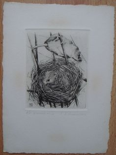 T J Greenwood artist proof etching Harvest Mice signed in pencil