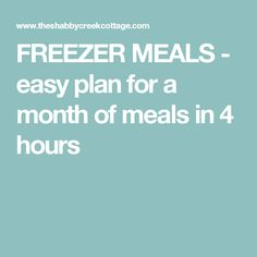 FREEZER MEALS - easy plan for a month of meals in 4 hours