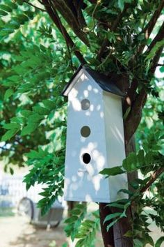 Nichoir Bird House