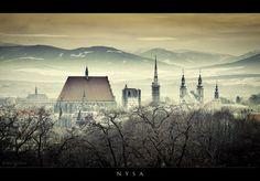 NYSA, Poland by Maciej Zych