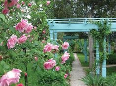 Poet Ann Spencer's garden: Rosa 'Madame Grégoire Staechelin (aka Spanish Beauty), and the lovely restored trellises. Sweet Briar College, Beautiful Gardens, Outdoor Spaces, Places To Go, Poetry Month, Around The Worlds, Backyard, Outdoor Structures, Landscape