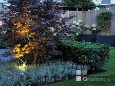 Sfeerverlichting in tuin
