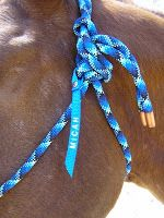 Savvy Horsewoman: Top 10 DIY Gifts for Horse Lovers