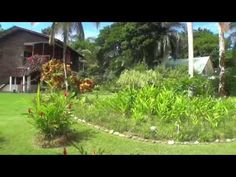 http://www.gulfshoresalabamahomes.com/ – Isla Colon, Bocas Del Toro Panama Real Estate For Sale by Jason Will with Panama Source Real Estate, call … 									source