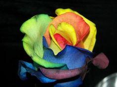 Design (químico) usado para modificar as cores das pétalas de rosas!