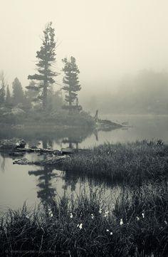 Morning at the lake by Скородумов Вениамин
