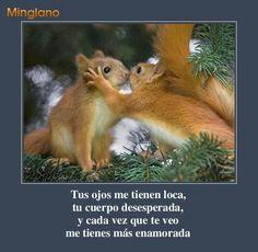 Squirrel kiss meme - photo#2