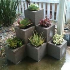 nice 28 Simple but Beautiful Cinder Block Planter Ideas for Your Garden https://wartaku.net/2017/05/27/28-simple-beautiful-cinder-block-planter-ideas-garden/