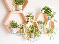diy pflanzen bild aus getr nkekartons vertikaler garten sperrholz und vertikal. Black Bedroom Furniture Sets. Home Design Ideas