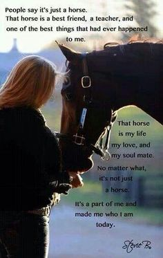 All my horses taught me more than any person can love them for being in my life and thankful for my family who love them too ❤️❤️