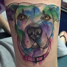 Watercolor pup tattooed by @20poundparrott #marcstattooing #nepatattoo #wilkesbarre #pa #pup #dogsofinstagram #doggies #pitbull #pibble #pitbullsofinstagram #lovernotafighter #love #watercolor #watercolortattoo #watercolorart by marcs315