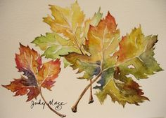 This is a watercolor painting of autumn maple leaves. Its painted on natural white Canson greeting card stock. The card measures 5 x 7 with