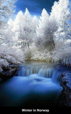 Winter In Norway. It's so beautiful.