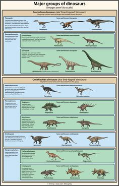 http://ewilloughby.deviantart.com/art/Dinosaur-Classification-Simplified-430743575
