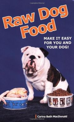 How to Make Dog Food: Recipes, Nutritional Information And Health Benefits