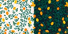 lemon tree on Behance
