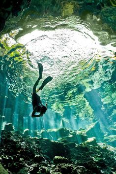 Learn what it's like to swim in a cenote deep in the Mayan jungle near the UNESCO World Heritage site Chichen Itza. Photo ©CadeButler, click for source.