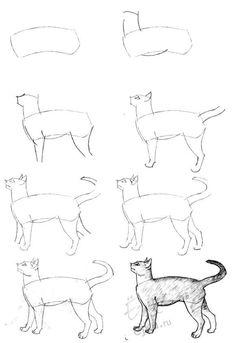 Урок поэтапного рисования карандашом - рисуем кошку